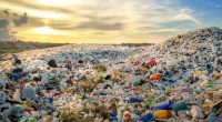 AFRICA: DITCh launches project to fight plastic waste pollution©MOHAMED ABDULRAHEEM/Shutterstock