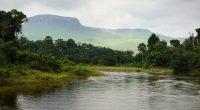 BÉNIN : le festival Riao dédie sa 8e édition à la préservation des eaux et forêts©Sergey Uryadnikov/Shutterstock