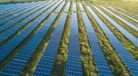 ALGERIA: 4000 MW Tafouk1 solar mega-project soon to be on track©city hunter/ Shutterstock