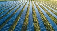 ALGÉRIE : un méga projet solaire de 4000 MW baptisé «Tafouk1» bientôt sur les rails©city hunter/ Shutterstock