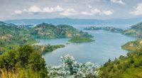 RDC-RWANDA : les deux pays s'allient pour préserver la biodiversité du lac Kivu©Tetyana Dotsenko / Shutterstock