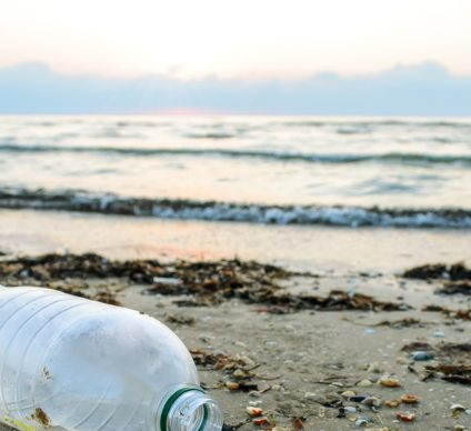 TUNISIA: Swimming suspended at 23 beaches due to pollution©Andrei Dubadzel/Shutterstock