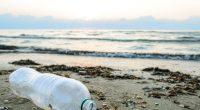 TUNISIE : suspension des baignades dans 23 plages, à cause de la pollution©Andrei Dubadzel/Shutterstock