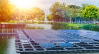 KENYA: Ecoligo to equip Rift Valley Roses with a 69 kW floating solar power plant ©Quality Stock Arts / Shutterstock