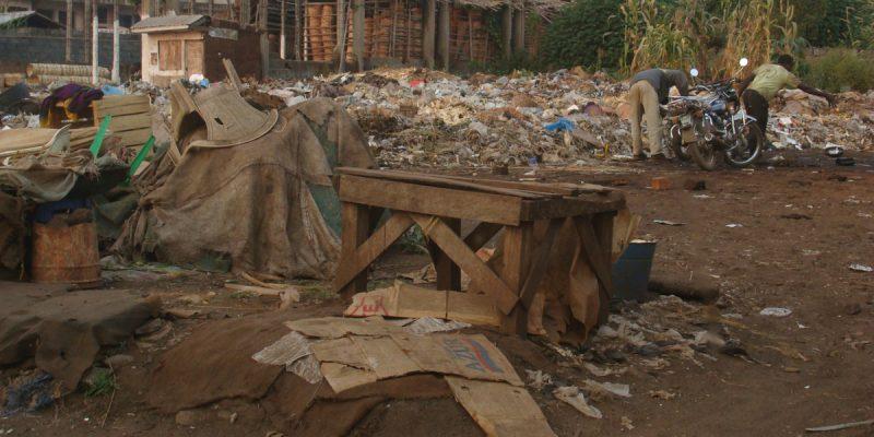 CONGO BRAZZA: National Environmental Action Plan under revision ©Scarabea/Shutterstock