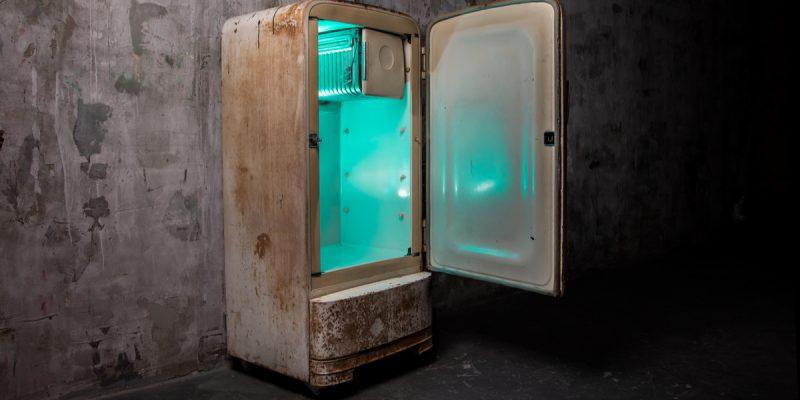 GHANA: Discarded refrigerators recycled into egg incubators ©danjaivanov/Shutterstock
