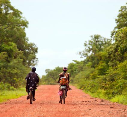 BURKINA FASO: Scientific council established for biodiversity in Bangr-weogo Park©Hector Conesa/Shutterstock
