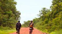 BURKINA FASO : un conseil scientifique pour la biodiversité du parc Bangr-weogo©Hector Conesa/Shutterstock