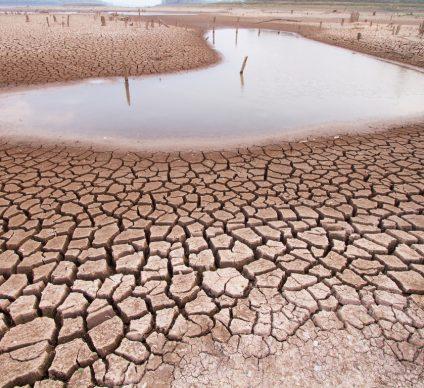 MALI - UGANDA: Denmark supports climate change mitigation©Piyaset / Shutterstock