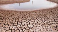 MALI - OUGANDA : le Danemark soutient la lutte contre le changement climatique©Piyaset / Shutterstock