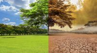 COTE D'IVOIRE: Country progresses in climate change control©Photomontage / Shutterstock