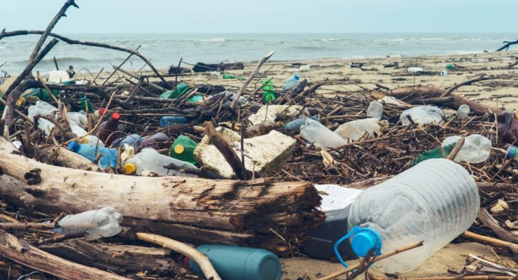 SOUTH AFRICA: Plastics Pact registers six new members