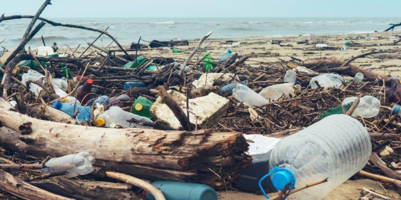 SOUTH AFRICA: Plastics Pact registers six new members©Larina Marina/Shutterstock
