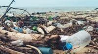 AFRIQUE DU SUD : le pacte sur le plastique enregistre six nouvelles signatures©Larina Marina/Shutterstock