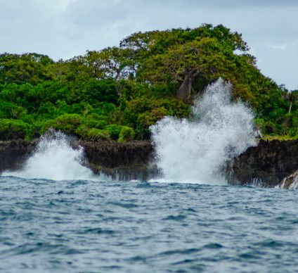 CENTRAL AFRICA: Six UNESCO proposals for climate-resilient coasts©Dan Rata/Shutterstock