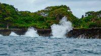 AFRIQUE CENTRALE : six propositions de l'Unesco pour des côtes résilientes au climat©Dan Rata/Shutterstock