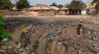 ZAMBIE : le Pnud soutient des initiatives innovantes de gestion des déchets©Peek Creative Collective/Shutterstock