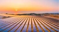 ZIMBABWE : le cimentier PPC va se doter d'une centrale solaire de 32 MWc ZIMBABWE : le cimentier PPC va se doter d'une centrale solaire de 32 MWc ©/Shutterstock