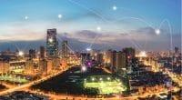 ÉGYPTE : Schneider Electric va optimiser le réseau électrique grâce au numérique©Vietnam Stock Images/Shutterstock