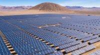 TCHAD : un appel d'offres pour la première phase de la centrale solaire de Djermaya©abriendomundo/Shutterstock