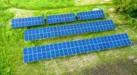 KENYA: Redavia fuels Menengai Farmers tea estate with solar power©Bilanol/Shutterstock