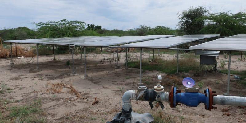 ÉGYPTE : la SFI, la NBE et la MSMEDA financeront les start-up d'irrigation solaire©CochraneL/Shutterstock
