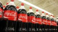 AFRIQUE DU SUD : Coca-Cola déploie ses bouteilles consignées dans trois provinces©Niloo/Shutterstock