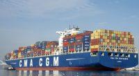 GAMBIE : l'armateur CMA-CGM suspend les exportations de bois©Sheila Fitzgerald/Shutterstock