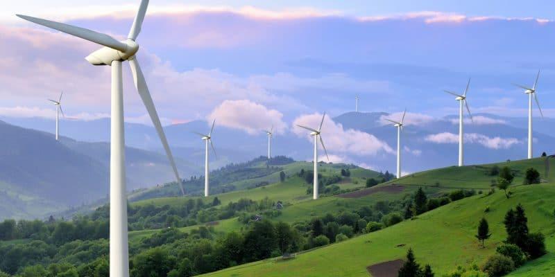 GHANA : Nek veut produire 1000 MW d'énergie éolienne pour booster le réseau © Volodymyr Burdiak/Shutterstock