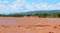 COTE D'IVOIRE : un service de géolocalisation pour prévenir les risques d'inondation©Anna Om/Shutterstock