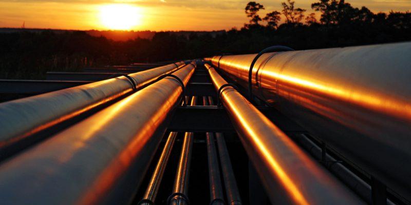 GABON : le pétrole sera éliminé du PIB au profit de l'exploitation durable du bois©Kodda/Shutterstock