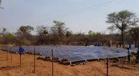 AFRIQUE : EEP Africa finance Redavia pour fournir l'énergie solaire aux entreprises©Jen Watson/Shutterstock
