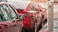 ÉGYPTE: El Nasr Automotive va rouvrir pour produire des voitures électriques dès 2021©Scharfsinn/Shutterstock