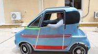 ALGERIA: Electric car project seeks investors©Centre de Développement des Energies Renouvelables/Shutterstock