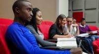 GHANA : l'université de l'environnement va former sa première cuvée d'étudiants : ©Sunshine Seeds/Shutterstock
