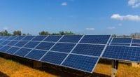 KENYA : Marco Borero boucle le financement pour son projet solaire PV de Nyeri©portumen/Shutterstock