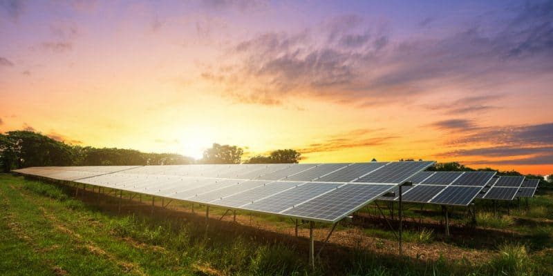 ALGERIA: Government aims to produce 1000 MWp with small solar power plants©Thinnapob Proongsak/Shutterstock