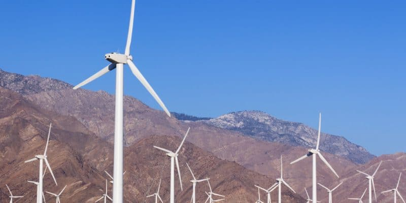 EGYPT: Vestas obtains approval for a 250 MW wind farm in the Gulf of Suez©sumikophoto/Shutterstock