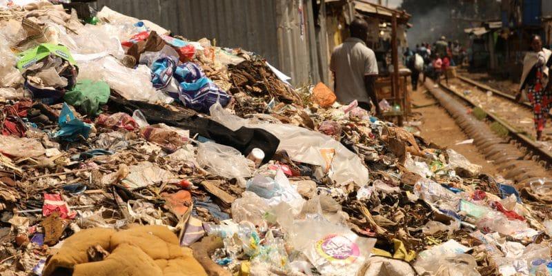 MOZAMBIQUE : l'usage des sacs plastiques sera interdit à partir de 2021©Luvin Yash/Shutterstock