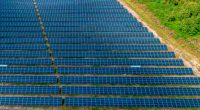 SOUTH AFRICA: Sasol invites tenders for 10 MWp solar power plants©Ruslan Ivantsov/Shutterstock