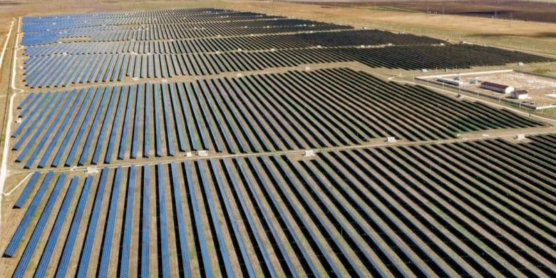 EGYPT: EETC cancels tender for West Nile solar power plant©Tatiana Gordievskaia/Shutterstock