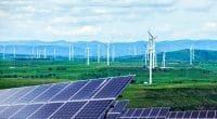 AFRIQUE DU SUD : Stanlib investit dans Mulilo, un producteur d'énergies renouvelables©zhengzaishuru/Shutterstock