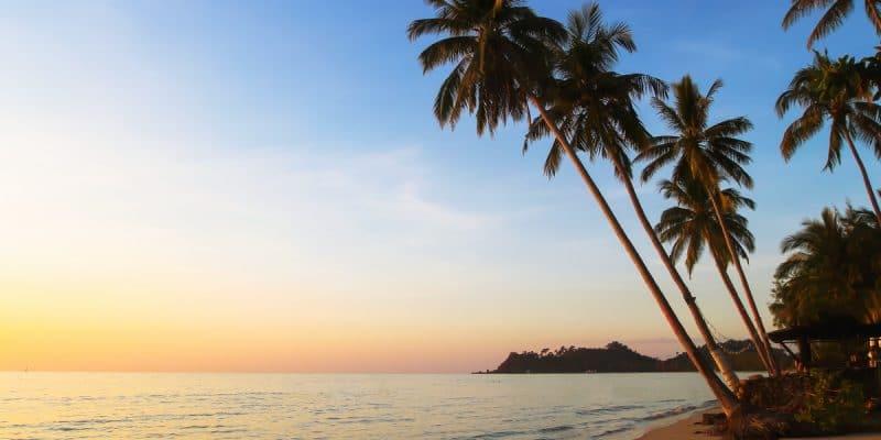AFRIQUE DE L'EST : près de 50 M$ du FVC pour des projets résilients au climat©Song_about_summer/Shutterstock