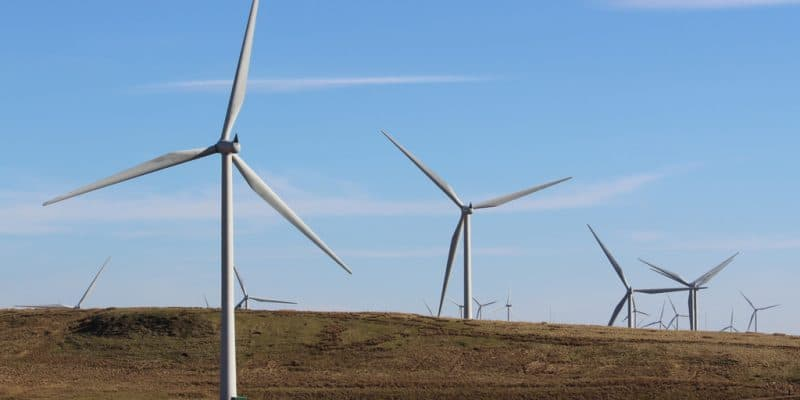 EGYPT: EBRD grants $50 million for Engie wind project in the Gulf of Suez©David Falconer/Shutterstock