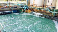 GHANA: Exim Bank of India finally opens $30 million water line of credit to Yendi©Sawat Banyenngam/Shutterstock