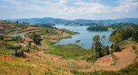 RWANDA : Rema scelle 4 fermes agricoles pour protéger la biodiversité du lac Kivu©Petr Klabal/Shutterstock