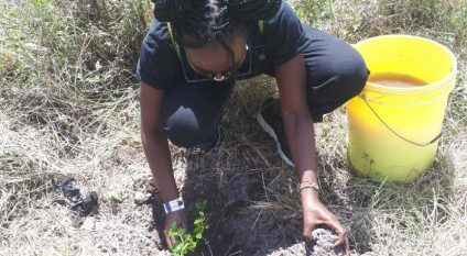 KENYA: Call for participation in the planting of 10,000 trees in Nairobi Park©Skippy Adventures Tours & Events