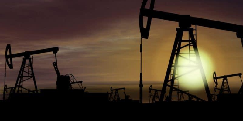 OUGANDA : un nouveau rapport pointe le risque écologique du projet pétrolier de Total©Skorzewiak/Shutterstock