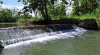 COTE D'IVOIRE : le gouvernement lance la construction d'un barrage hydroagricole à Koro©Shanjaya/Shutterstock