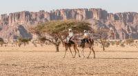 AFRIQUE : des solutions climatiques pour prévenir les crises sécuritaires©Torsten Pursche/Shutterstock